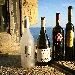 -I vini vincitori del Napoli Wine Challenge 2018 Vitigno Italia