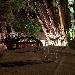 -Il giardino esterno - - - Fotografia inserita il giorno 20-02-2019 alle ore 13:35:28 da tannurao