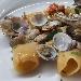 Paccheri con lupini e filetti di branzino scottato