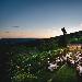 -resort montelucci - -resort montelucci - Fotografia inserita il giorno 10-11-2018 alle ore 13:38:33 da lucaborghini