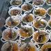La Ricetta del giorno 22/03/2018  inserita su spaghettitaliani.com da Mario Savona: Alici marinate (all'ammiraglia) alla  moda dello chef