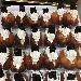 Babà con panna e decorazioni al cioccolato - - - Fotografia inserita il giorno 11-11-2018 alle ore 10:31:23 da vincenzoliuzzi