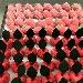 Fruttini di pasta di mandorle - - - Fotografia inserita il giorno 13-12-2018 alle ore 09:08:03 da vincenzoliuzzi