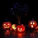 Halloween - - - Fotografia inserita il giorno 19-11-2018 alle ore 21:04:32 da luigi