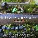 """Lunedì 18 giugno a Napoli, al Cortile delle Carrozze di Palazzo Reale, nel Napoli Teatro Festival Italia 2018, la compagnia Prime Lune debutta con lo spettacolo """"Il Paese Di Chi Se Ne Va"""", scritto da Francesca Muoio"""