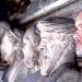 """Il documentario """"Così parlò De Crescenzo"""", opera prima di Antonio Napoli, sarà in sala dal 26 ottobre prossimo"""