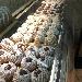 Nuvolette - Fotografia inserita da Vincenzo Liuzzi sul proprio Blog su spaghettitaliani.com