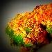 Ricetta inserita su spaghettitaliani.com da Gerardo Del Duca: Rotoli di Scarola con caprino, crudo e passata di pomodoro
