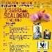 Sagra dello Scalogno Piacentino - - - Fotografia inserita il giorno 20-07-2018 alle ore 11:08:33 da faraone
