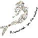 """Dal 7 al 21 gennaio per il Festival delle Vigne metropolitane di Napoli visite in cantina per degustare i vini """"made in Partenope"""""""