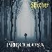 Cover di Pericolosa degli SFigher