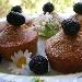 Ricetta inserita su spaghettitaliani.com da Nicoletta Semeraro: Mini cakes con farina integrale e more selvatiche